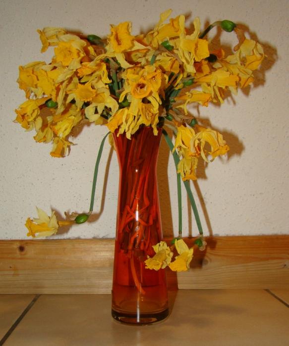Fleurs fan es blogosth for Bouquet de fleurs humour