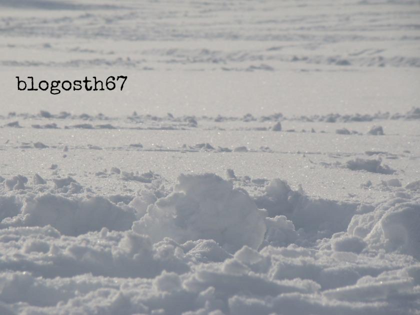 Champ-du-feu-neige