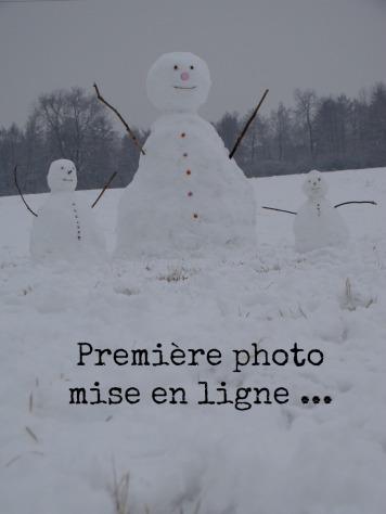 Bonhomme_de_neige_reglisse
