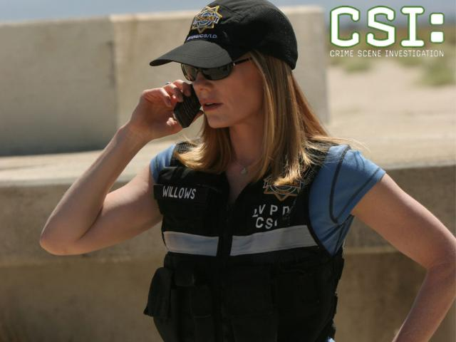 Catherine_Willows_CSI