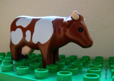 Que_mange_la_vache