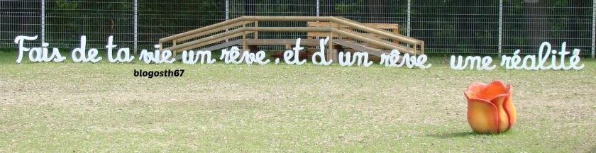 Fais_de_ta_vie_un_reve_et_d_un_reve_une_realite