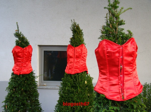 Chrysanthema_Lahr_2014_Corsets_rouges