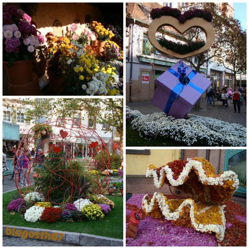 Chrysanthema_Lahr_2014_Deco