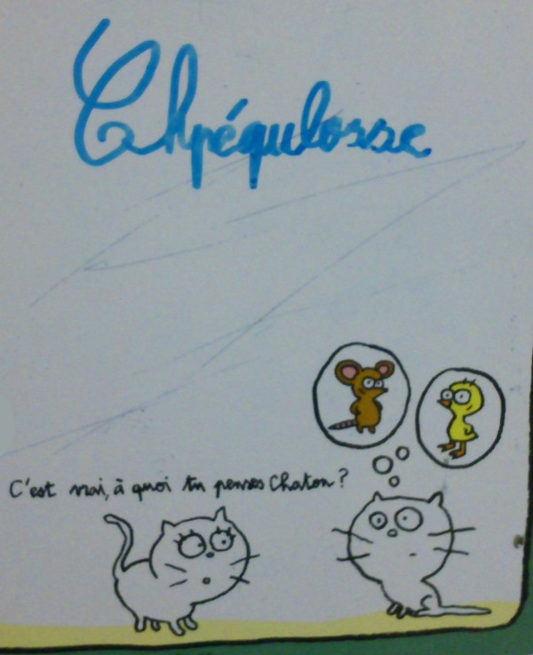 Chpequlosse_speculoos