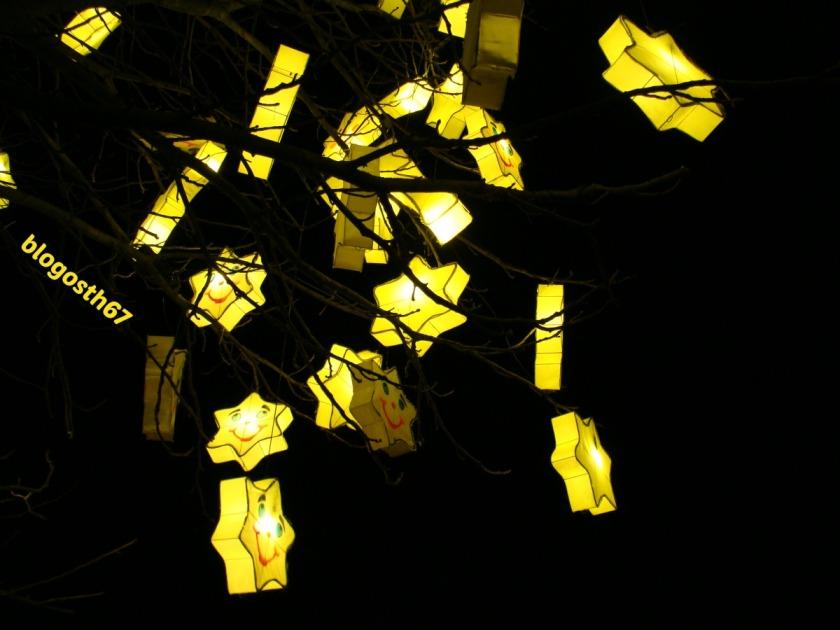 Silent_Sunday_1_Le_sentier_des_lanternes_Metz