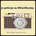 silentsunday