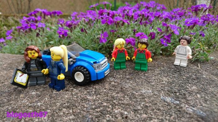 aubrietes_Lego_Printemps