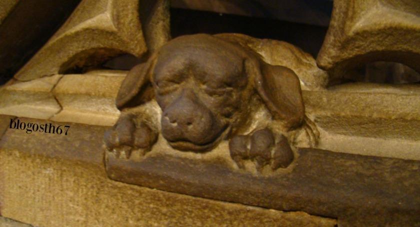 Chien_Geiler_Cathedrale_Strasbourg_2