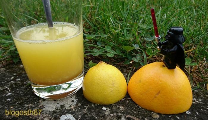 la_force_des_fruits