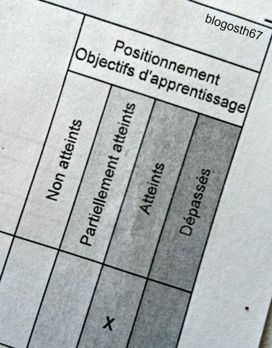 livret_scolaire_unique_numerique_lsun